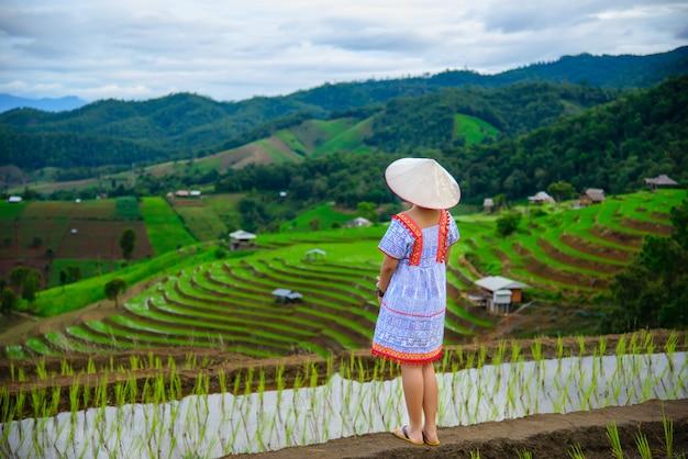 Piękne tarasy ryżowe pa bong piang w wiosce pa bong piang w mae cham, chiangmai, tajlandia