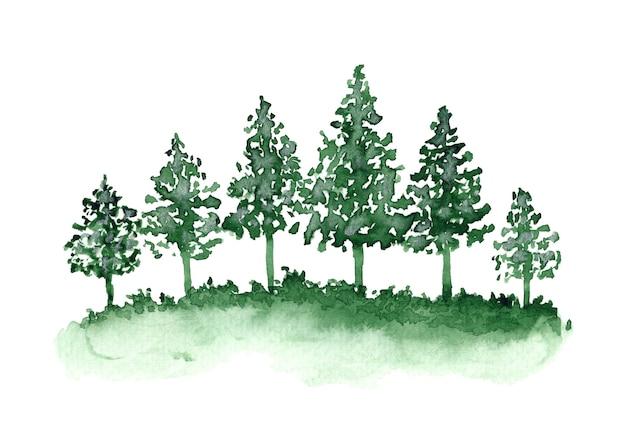 Piękne tło akwareli z zielonym lasem iglastym i trawą