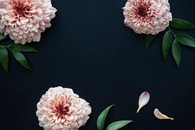 Piękne tło kwiaty łososia pip