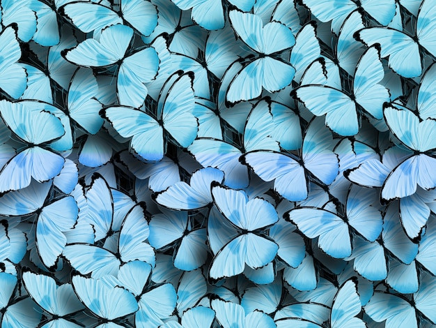 Piękne tło tropikalnych różowych motyli