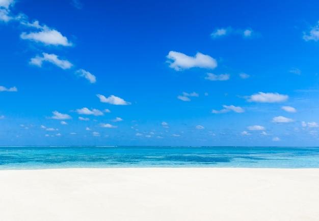 Piękne tropikalne morze