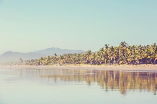 Piękne tropikalne wybrzeże oceanu spokojnego w kostaryce
