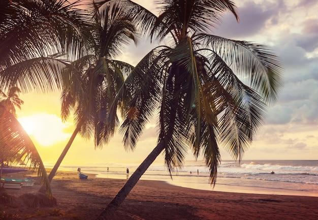 Piękne Tropikalne Wybrzeże Oceanu Spokojnego W Kostaryce Premium Zdjęcia