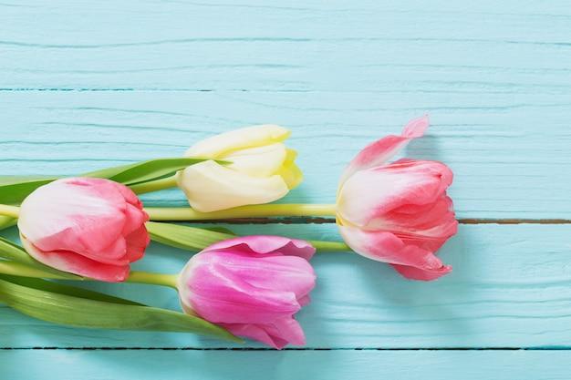 Piękne tulipany na niebieskim drewnianym tle widok z góry