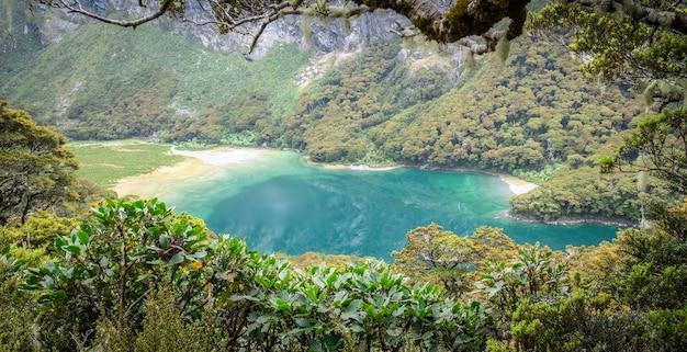 Piękne turkusowe jezioro alpejskie otoczone gałęziami drzew i liśćmi routeburn track nowej zelandii