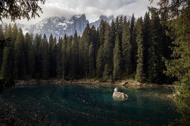 Piękne ujęcie błękitnego jeziora otoczonego wysokimi drzewami