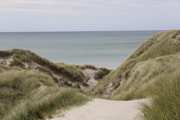 Piękne ujęcie błękitnego morza z zielonymi wzgórzami na pierwszym planie w plaży kaersgaard w danii