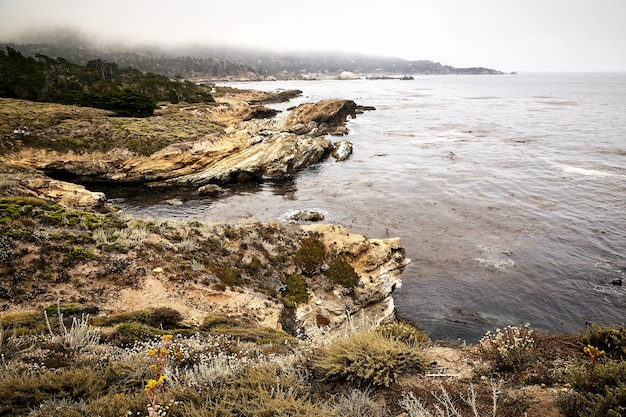 Piękne ujęcie brzegu stanowego rezerwatu przyrody point lobos, kalifornia, usa