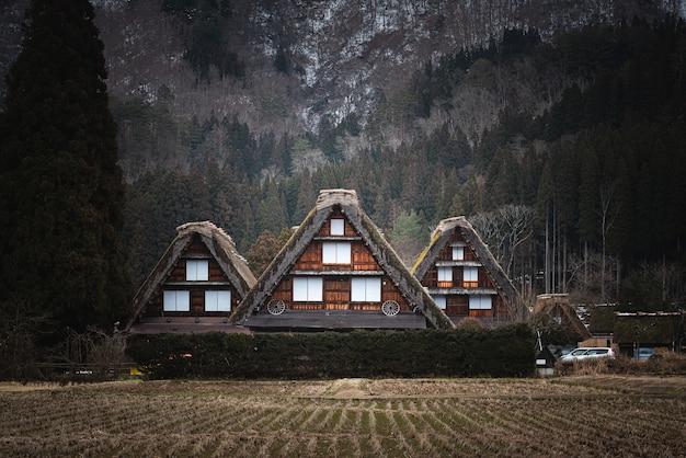 Piękne ujęcie budynków w shirakawa w japonii