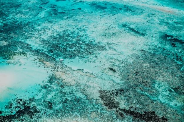 Piękne ujęcie dna morskiego z zapierającymi dech w piersiach teksturami - idealne na wyjątkowe tło lub tapetę