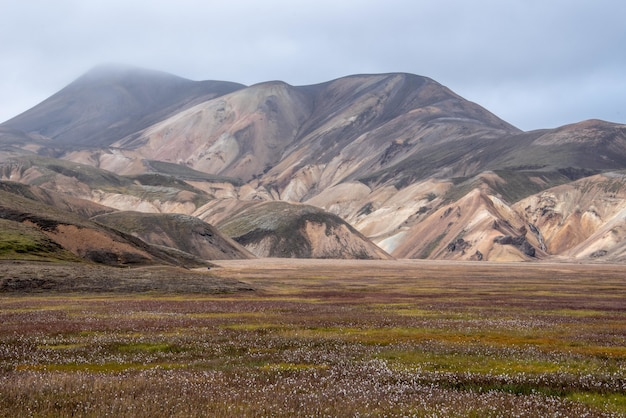 Piękne ujęcie doliny z górami na islandii