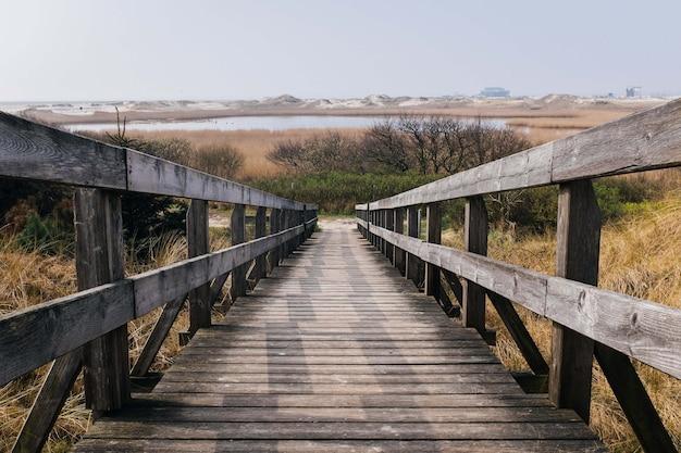 Piękne ujęcie drewnianej promenady w polu z drzewami i wzgórzem w tle
