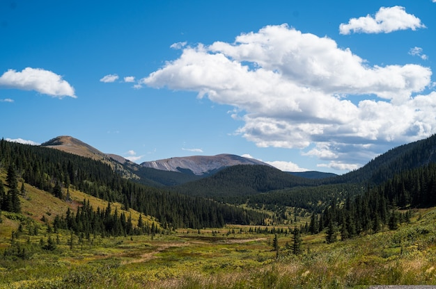 Piękne ujęcie gór skalistych i zielonych lasów w ciągu dnia