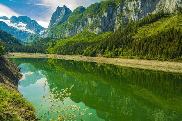 Piękne ujęcie jeziora gosausee otoczonego austriackimi alpami w jasny dzień