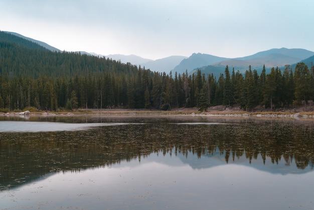 Piękne ujęcie jeziora odbijającego drzewa na brzegu pod błękitnym niebem