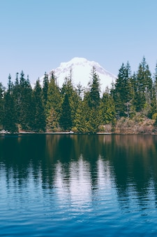 Piękne ujęcie jeziora z lasem sosnowym i odbicia w jeziorze