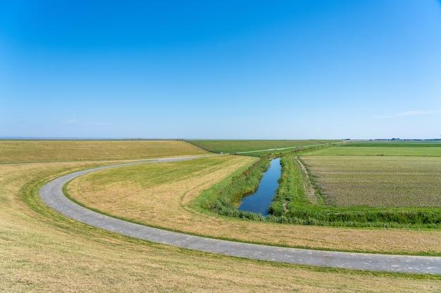 Piękne ujęcie krętej drogi prowadzącej przez pole w holandii pod czystym, błękitnym niebem