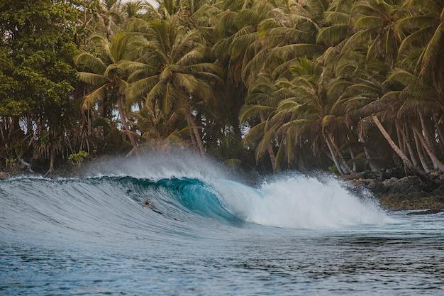 Piękne ujęcie łamania fali z tropikalnymi drzewami na plaży w indonezji