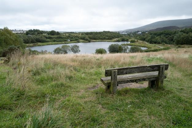 Piękne ujęcie ławki nad jeziorem otoczonej różnymi rodzajami roślin