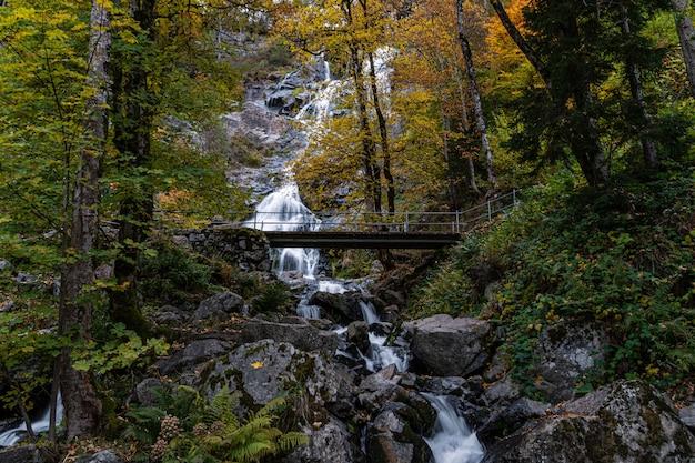 Piękne ujęcie malowniczego wodospadu todtnau w schwarzwaldzie, niemcy