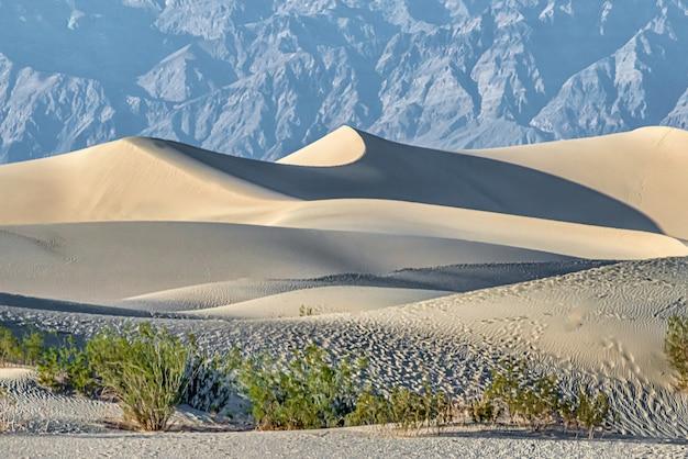 Piękne ujęcie mesquite flat sand dunes w death valley national park w kalifornii, usa
