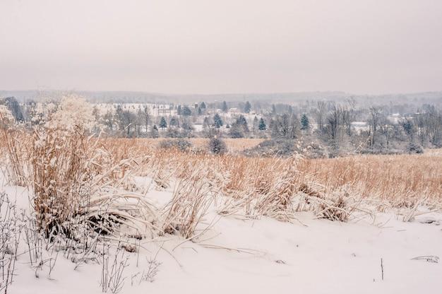 Piękne ujęcie niesamowitej scenerii ośnieżonej wsi w pensylwanii