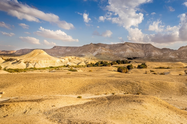 Piękne ujęcie pustynnego pola z górami i zachmurzonym błękitnym niebem