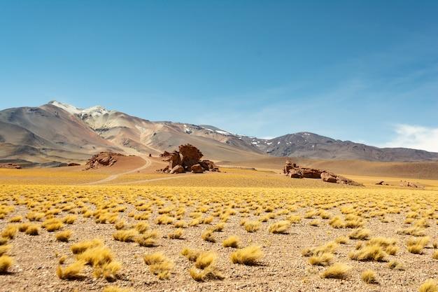 Piękne ujęcie pustynnych krajobrazów o zachodzie słońca w chile