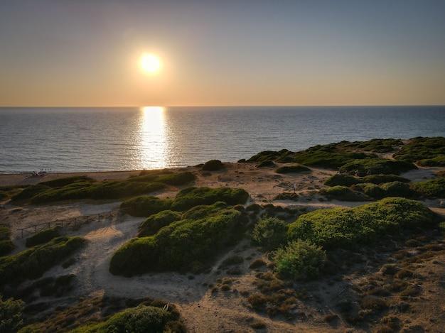 Piękne ujęcie scenerii zachodu słońca z zielenią nad brzegiem morza
