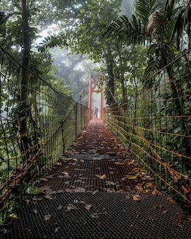 Piękne ujęcie starego mostu w środku lasu