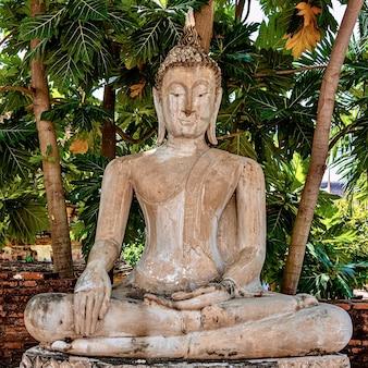 Piękne ujęcie starego posągu buddy