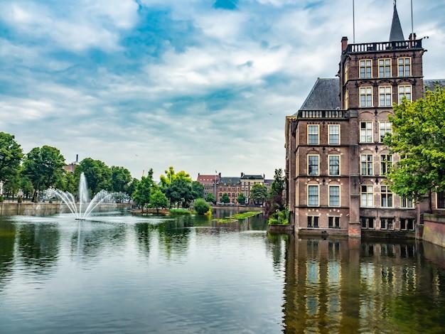Piękne ujęcie stawu w pobliżu binnenhof w holandii