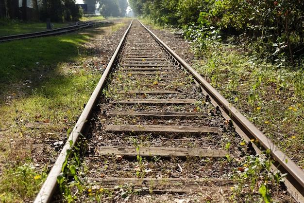 Piękne ujęcie torów kolejowych pokrytych trawą w ciągu dnia