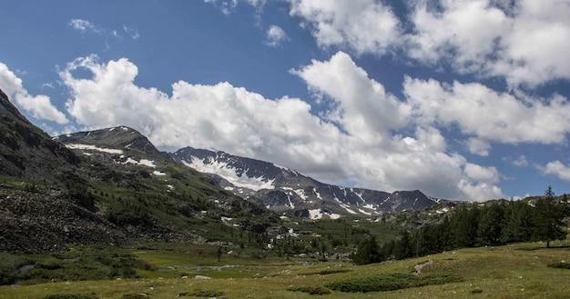 Piękne ujęcie trawiastego pola z drzewami i górami oraz warstwą chmur na niebie