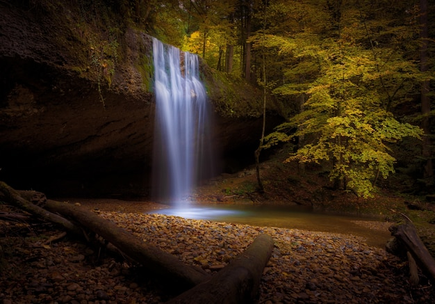 Piękne ujęcie wodospadu otoczonego jesiennymi drzewami i liśćmi w lesie