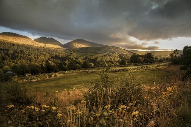 Piękne ujęcie wzgórz podczas zachodu słońca w górach mourne w irlandii północnej