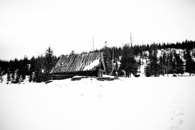 Piękne ujęcie zaśnieżonej, zalesionej góry z opuszczonym domem pośrodku