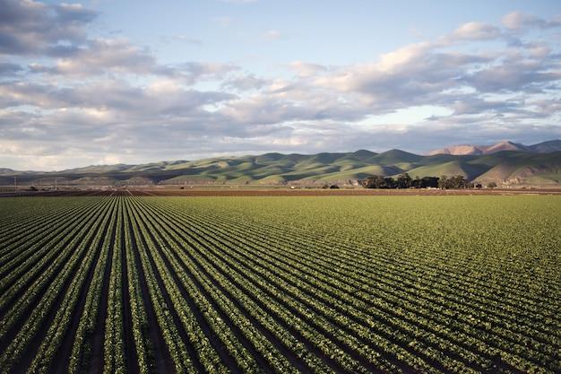 Piękne ujęcie zielonego pola otoczonego wysokimi górami pod zachmurzonym niebem