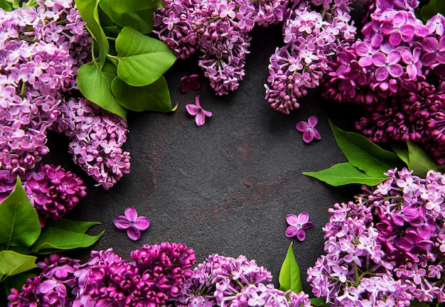 Piękne wiosenne kwiaty bzu
