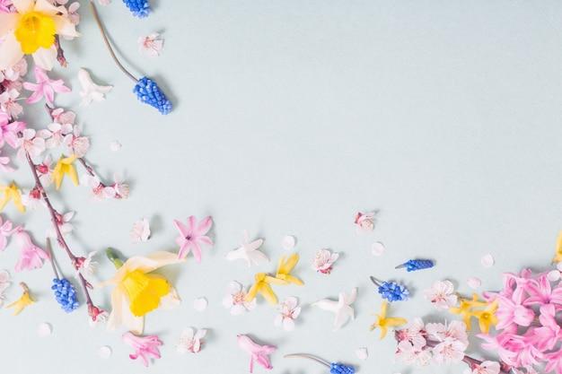 Piękne wiosenne kwiaty na niebieskiej powierzchni