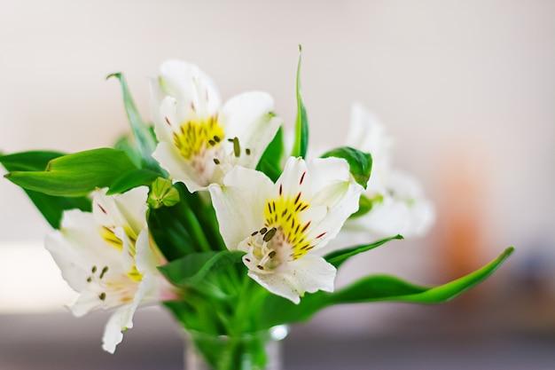 Piękne wiosenne kwiaty w wazonach