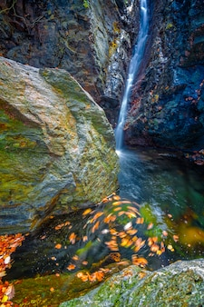 Piękne wodospady welonowe, omszałe skały, wirujące liście