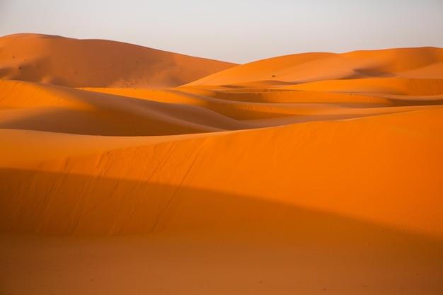 Piękne wydmy na saharze w maroku