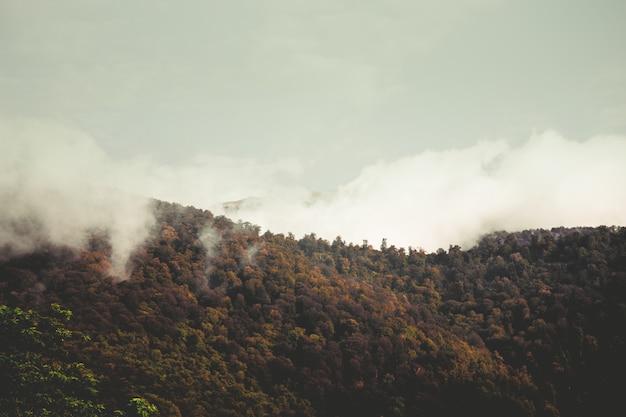 Piękne wzgórza i niebo