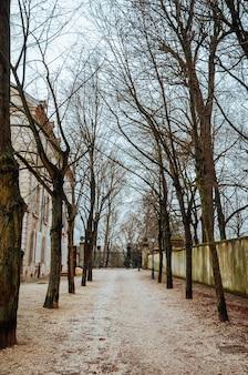 Piękne zdjęcia krajobrazu ogrodów paryża w pochmurny dzień