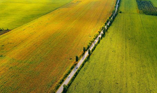 Piękne zdjęcie lotnicze wykonane dronem z niesamowitych pól uprawnych latem.