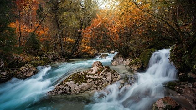 Piękne zdjęcie triglav national park, słowenia jesienią