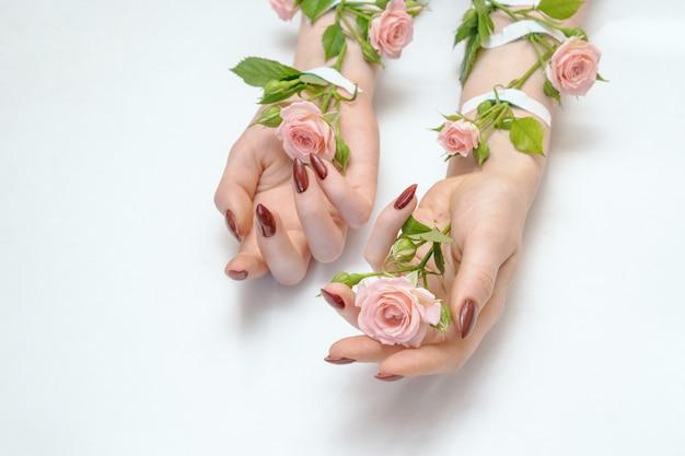 Piękne żeńskie ręki z menchii róży kwiatami odizolowywającymi