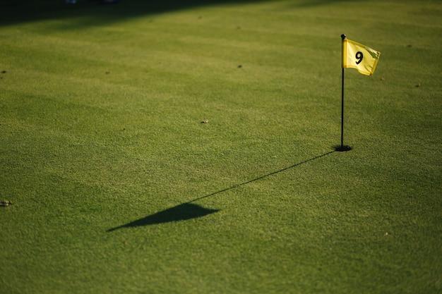 Piękne zielone pole golfa trawa i dziura z flagą.