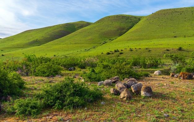 Piękne zielone wzgórza letni krajobraz